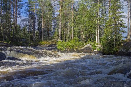 pista: Rapids on the Pista river, Karelia, Russia.