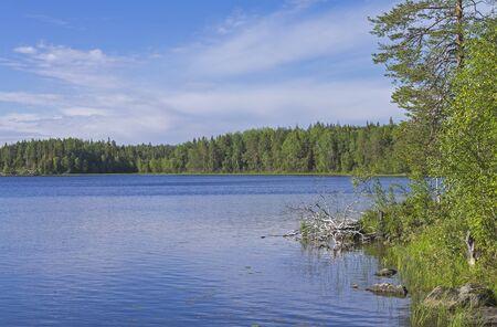 pista: Lake on a sunny summer day. Karelia, Russia.