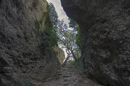 lived here: Crimea. View of a narrow gorge. It is believed that the stairs in this gorge is made by the ancient Tauris, who lived here at the beginning of the Common Era.