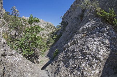 narrowly: The narrow rocky gorge in the Crimean mountains.