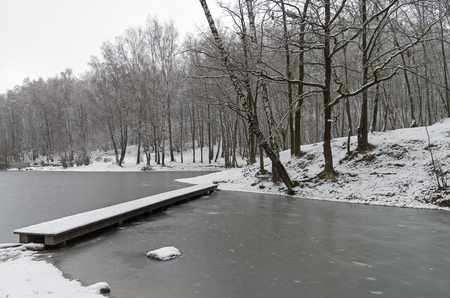 frondage: Pond at the end of November. The first ice and the first snow. A narrow footbridge. Forest park in Moscow, Russia.