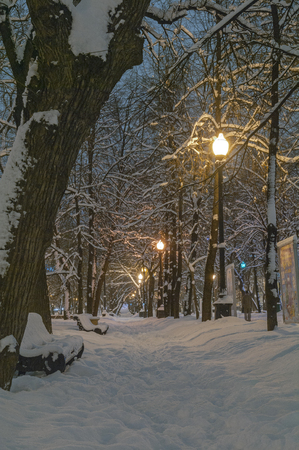 blanch: Tverskoy Boulevard in Moscow, covered with fresh snow. The winter of 2009-2010. New years night.