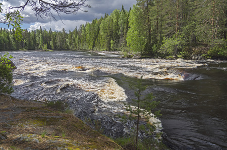 rapids: Rapids Dog on the river Shuya, Karelia, Russia. June, high water level. Stock Photo