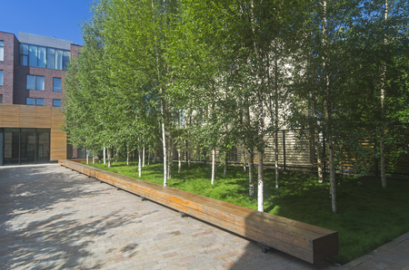 Quiet green area in the city center. Sunny July morning.  Moscow, Russia. 版權商用圖片