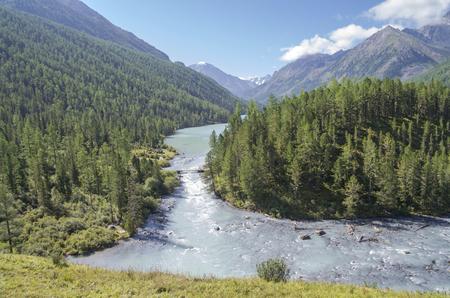 The Kucherla river flows from Kucherla lake. Altai Mountains, Russia. Sunny summer day.