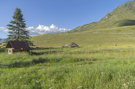 Abandoned cattle-ranch. Altai Mountains, Russia. Sunny summer day. Stock Photo