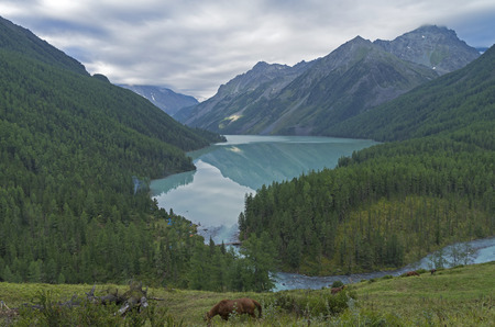 cusp: Reflection of mountains in the lake. Kucherla lake. Altai Mountains, Russia. Overcast summer morning.