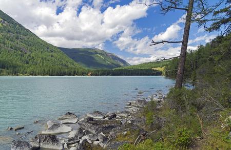 Rocky shore. Kucherla lake. Altai Mountains, Russia. Sunny summer day.