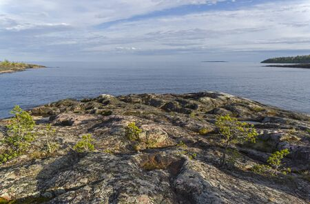 Ladoga skerries. Small pines on the granite cape on the shore of the Ladoga Lake. June Stock Photo