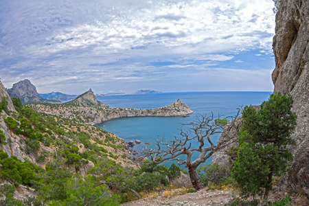 View from the rocks of Karaul-Oba to the Blue Bay in Novyy Svet. Landscape with a dried relic pine. Crimea. Stock Photo