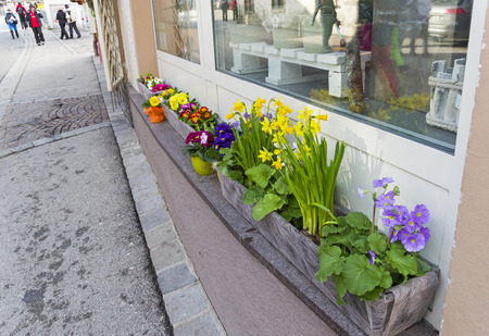 Pots and boxes with flowers on the street next to the flower shop. Spring.