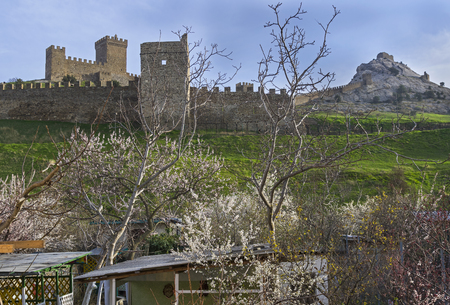 Genoese fortress in Sudak, Crimea. View of the fortress walls and towers from the flowering orchard. Early April.