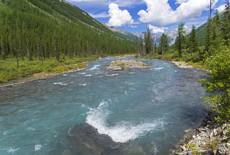 Altai Mountains. The Shawla River above the estuary of the Yeshtykol River. August. Siberia, Russia.