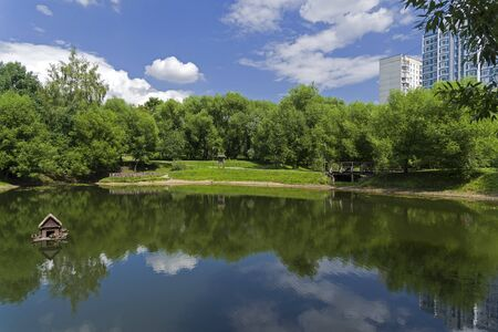 A small pond in the south-west of Moscow, Russia. Sunny day in July.