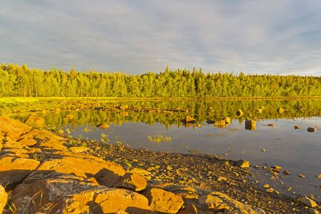 The shore of the White Sea in the rays of the evening sun. The middle of the tide. Kandalaksha Gulf, Karelia, Russia, end of June.
