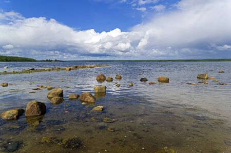 The littoral zone at hight tide. The shore of the White Sea. Kandalaksha Gulf, Karelia, Russia, end of June.