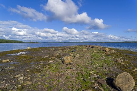 The littoral zone at low tide. The shore of the White Sea. Kandalaksha Gulf, Karelia, Russia, end of June. Stock fotó