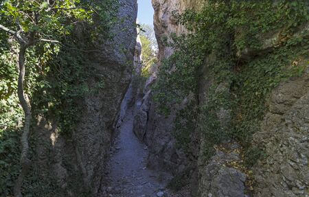 Crimea. View of a narrow gorge. It is believed that the stairs in this gorge is made by the ancient Tauris, who lived here at the beginning of the Common Era.