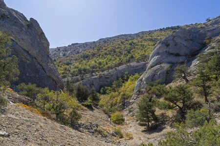 A small gorge in the Crimean mountains. The foot of the Sokol mountain (Kush-Kaya), the Black Sea coast between Sudak and Novyy Svet. Sunny day in September.