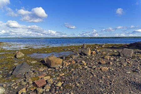 The littoral zone at low tide. The shore of the White Sea. Kandalaksha Gulf, Karelia, Russia, end of June. 版權商用圖片
