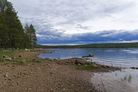 The littoral zone at low tide. The shore of the White Sea.Karelia, Russia, end of June. 版權商用圖片