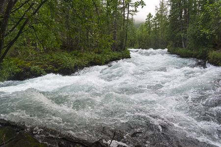 The Billiard rapids on the Zhombolok River. East Sayan, Buryatia, Siberia, Russia. 版權商用圖片