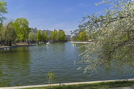 Pond in Gorky Central Park of Culture and Leisure. Sunny day in early May.