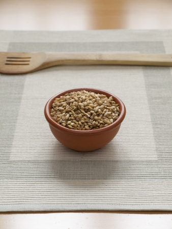 Close up view of organic Barley in a bowl with a wodden Spoon