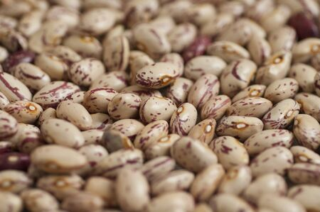 pinto bean: Close-up view of organic Pinto beans