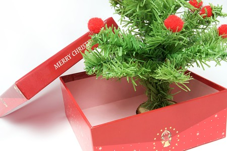 red gift box: Red gift box and christmas tree on isolated background