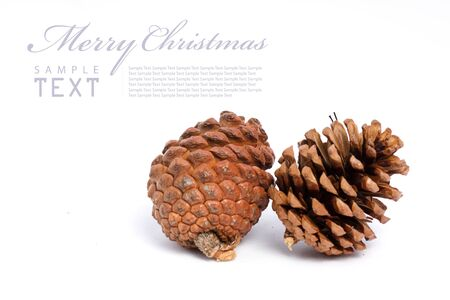 Christmas cones on a white background with copy space photo