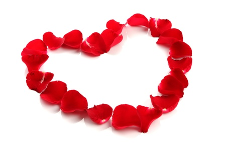 Beautiful heart of red rose petals on white background Stock Photo - 13635702