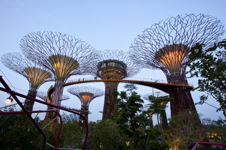 marina bay: Singapore, Singapore - SEPTEMBER 10, 2012: Night view of The Supertree Grove at Gardens by the Bay in Singapore. Spanning 101 hectares of reclaimed land in central Singapore, adjacent to Marina Reservoir. Editorial