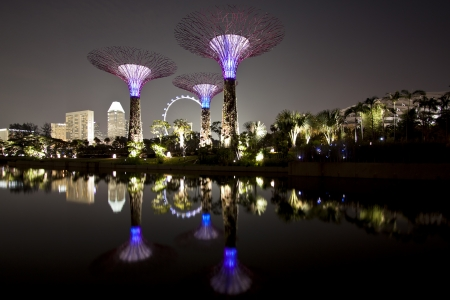 hectares: Singapore, Singapore - SEPTEMBER 10, 2012: Night view of The Supertree Grove at Gardens by the Bay in Singapore. Spanning 101 hectares of reclaimed land in central Singapore, adjacent to Marina Reservoir.
