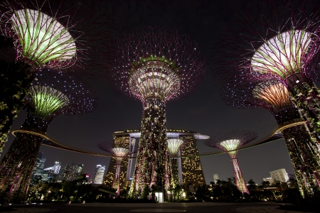 싱가포르, 싱가포르 - 2012년 9월 10일 : 싱가포르에있는 베이로 가든 Supertree 로브의 야경. 마리나 저수지에 인접한 싱가포르 중심부에있는 매립지 101 헥타르, 스패닝. 에디토리얼
