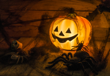 antichrist: Helloween party toys with pumpkin and spiders.