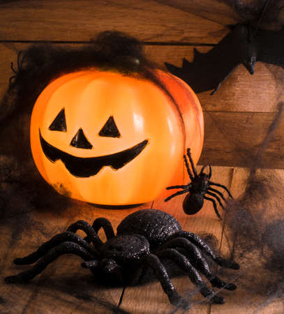wet wood: Image of Halloween toys spiders and punpkin Stock Photo