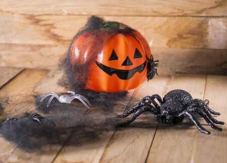 helloween: Helloween party toys with pumpkin and spiders.