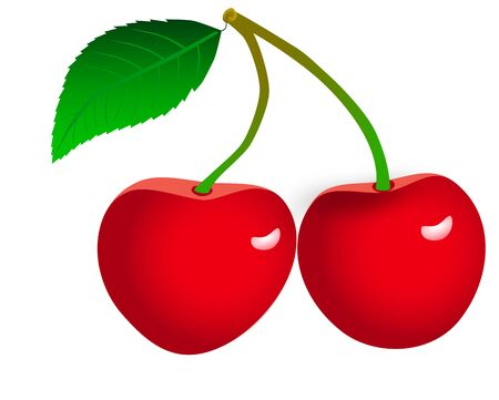 rasterized: Two cherries with leaves on a white background. (rasterized version)