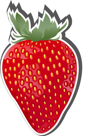 Vector Strawberry Fruit Icon  Vector