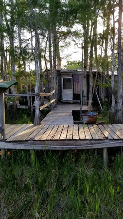 A dilapidated house in the swamp