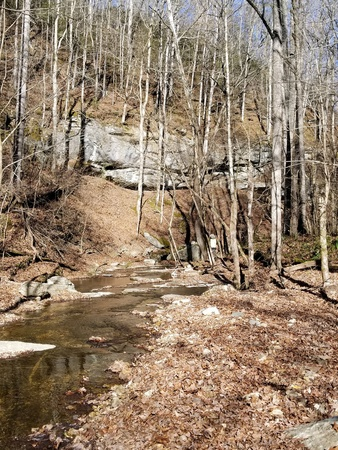 A creek runs along a mountainside valley