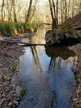 Water runs down a stream