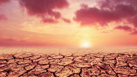 sunset over the desert Banco de Imagens