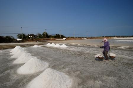 Salt farm, Thailand photo