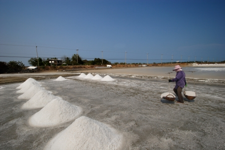 salina: Salt farm, Thailand