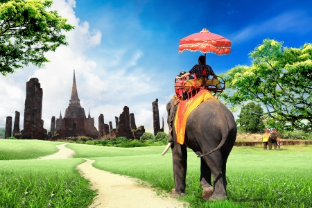 travel concept, tourists on an elephant  Stock Photo