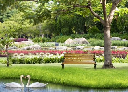 park bench: Green park and Two white swans