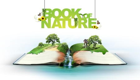 background nature: Open book with green nature