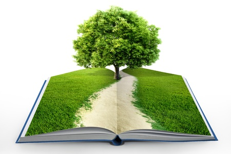 knowledge tree: book of nature isolated on white Stock Photo